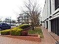 Canberra ACT 2601, Australia - panoramio (70).jpg