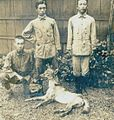 Canid shot at Matsudaira agricultural station (1910) 1.jpg