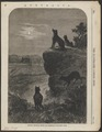 Canis dingo - 1863 - Print - Iconographia Zoologica - Special Collections University of Amsterdam - UBA01 IZ22200409.tif