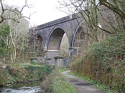 Cann Viaduct and river Plym - geograph.org.uk - 154277.jpg