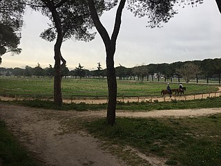Capannelle Racecourse Horse racing venue in Rome