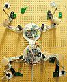 Capuchin Free Climbing Robot.jpg