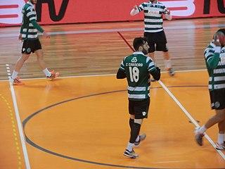 Carlos Carneiro (handballer) Portuguese handball player