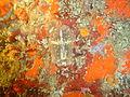 Carpet flatworm at Vogelsteen DSC03154.JPG