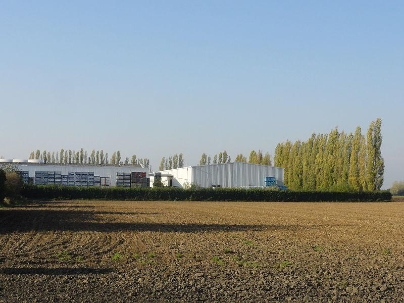 La Fosse n° 1 de la Compagnie des mines de Carvin était un charbonnage constitué d'un seul puits situé à Carvin, Pas-de-Calais, Nord-Pas-de-Calais, France.