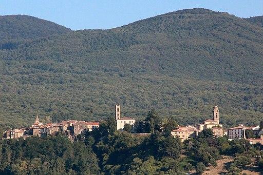 Panorama di Castel del Piano, con i Campanili delle chiese