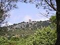 Cazevieille TourRuinee 23072009.JPG
