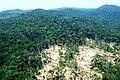 Cerro Tigre, El Zancudo, Guania - panoramio.jpg