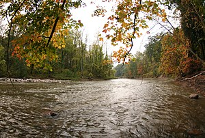 Chagrin River - Image: Chagrin River viewed in fall under some leaves
