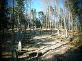 Charzewice, cmentarz wojenny nr 290 (5).JPG