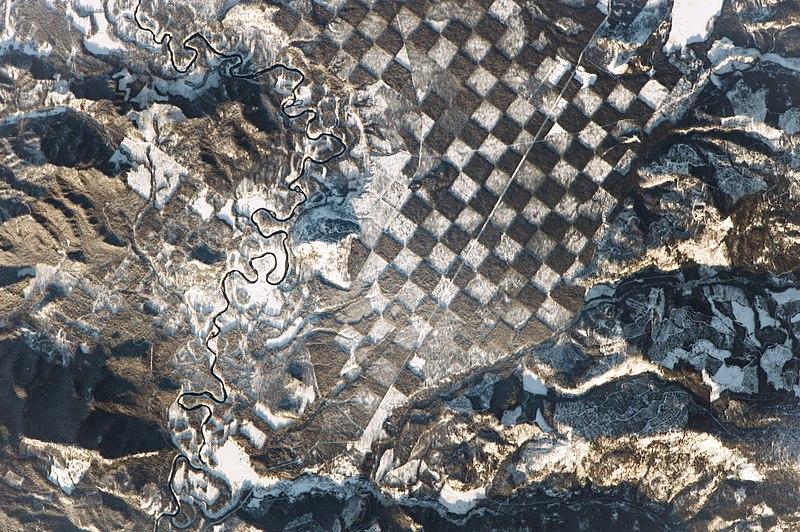 Checkerboard forest in Idaho.jpg