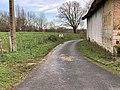 Chemin Mares Perrex 2.jpg