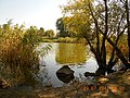 Cherkas'kyi district, Cherkas'ka oblast, Ukraine - panoramio (105).jpg