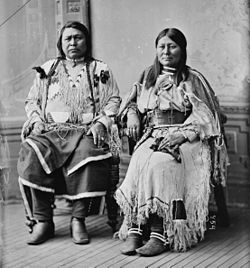 Chief Ouray - Brady-Handy.jpg