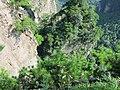 China IMG 3394 (29625808232).jpg