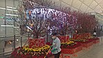 Chinese New Year at the Hong Kong International Airport (2018) 06.jpg