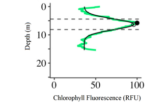 Deep chlorophyll maximum - Fig. 2. Example of the level of chlorophyll fluorescence at different water depths.