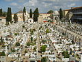 Cimitero della misericordia di viareggio 14.JPG