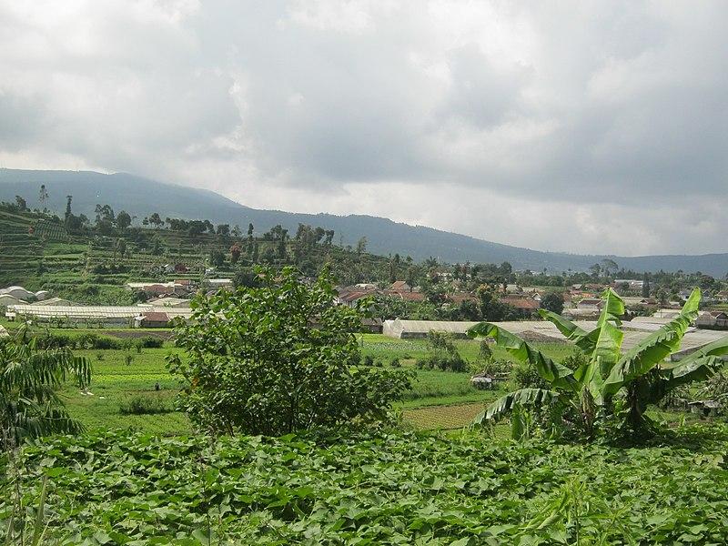 File:Ciwaruga, Kab. Bandung Barat - panoramio.jpg ...