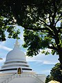 Clear environment in srilanka.jpg