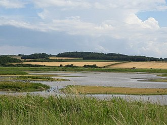 Cley Marshes - Looking inland across the reserve