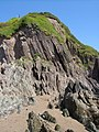 Cliff and rocks beside Owen's Point - geograph.org.uk - 189427.jpg