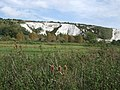 Cliffs viewed from Lewes LNR - geograph.org.uk - 2595179.jpg