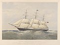 Clipper Ship Coonatto - Messrs Anderson Thomson and Co Owners and Messrs Thos Bilbe and Co Builders RMG PY8564.jpg