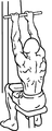 Close-grip-front-lat-pull-down-2.png