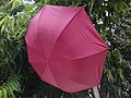 Cloth umbrellas.jpg