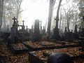 Cmentarz Powązkowski.jpg