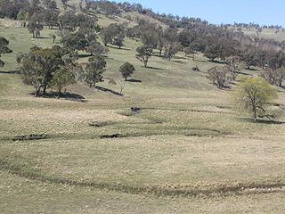 Cobrabald River river in Australia