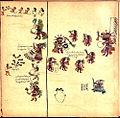 Codex Borbonicus (p. 26).jpg