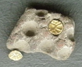 Coins from Stare Hradisko.png