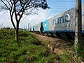 Comboio que passava sentido Boa Vista na Variante Boa Vista-Guaianã km 205 em Salto - panoramio (1).jpg