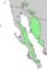 Condalia globosa range map 6.png