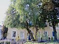 Coniston House Colesberg-006.jpg