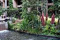 Conservatory - Longwood Gardens - DSC01064.JPG