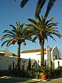Convento da Madre de Deus da Verderena - Barreiro - Portugal (2204342455).jpg