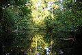 Corcovado National Park (8440029710).jpg