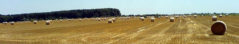Plain near Đakovo after harvest