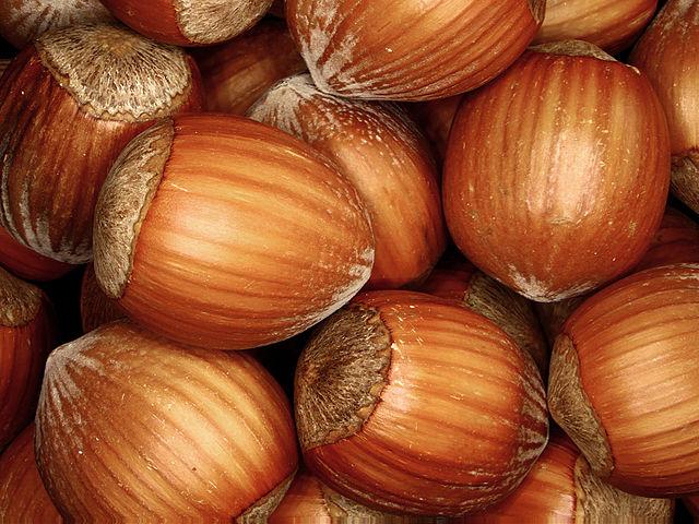 Suché lieskové orechy