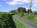 Country Road - geograph.org.uk - 414116.jpg