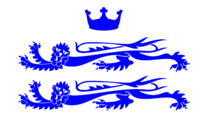 Flag of Berkshire - Image: County Flag of Berkshire (commercial version)