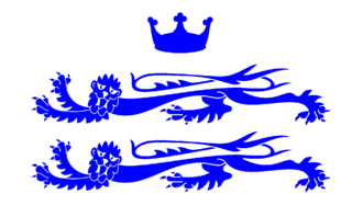 Berkshire County Council - Image: County Flag of Berkshire (commercial version)