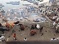 Cremations, Vanarasi - panoramio.jpg