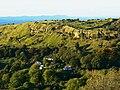 Crickley Hill, near Birdlip - geograph.org.uk - 1239156.jpg