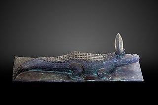 Crocodile-E 22888