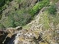 De pe Piatra Coziei - panoramio.jpg