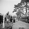De troepen marcheren aan prins Bernhard voorbij, Bestanddeelnr 255-8046.jpg